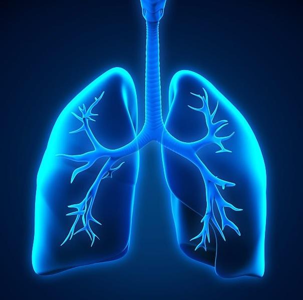 Препараты при бронхиальной астме: список, бронхолитики