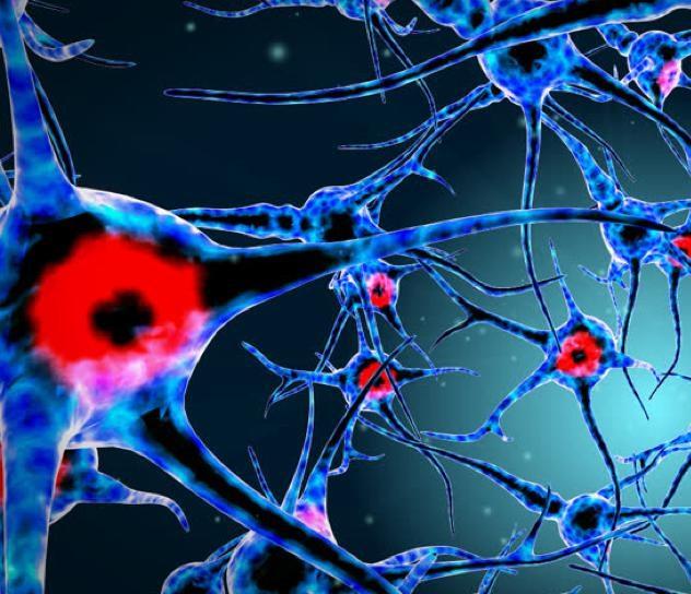 Препараты для лечения рассеянного склероза
