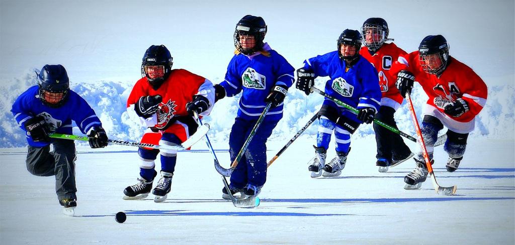 Самооборона с хоккейной клюшкой